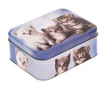 Metallbox 4-eckig 'Kätzchen' : Geschenkschachtel präsentbox