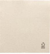 Pappservietten Recyclingspapier  : Events, catering