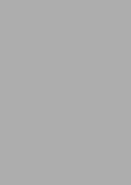 Rolle Geschenkpapier Kraft grau metallisiert : Verpackungzubehör
