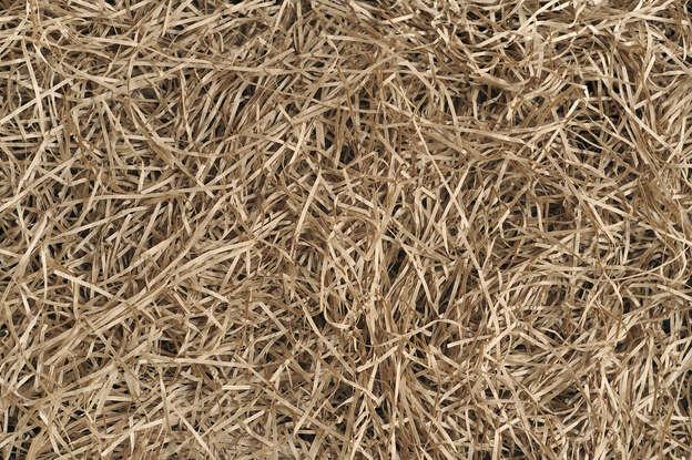 Frisure de papier kraft naturel fine : Verpackungzubehör