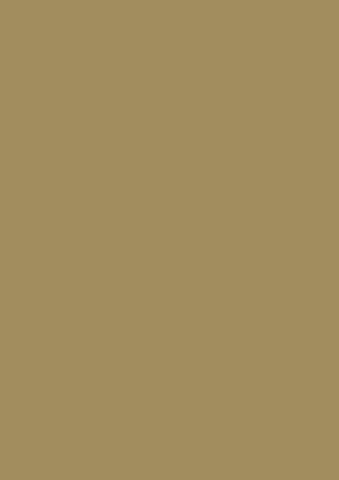 Rolle Geschenkpapier Kraft altgold metallic : Verpackungzubehör